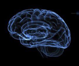 Un experimento espacial busca la clave de la enfermedad de Alzheimer en la ingravidez -